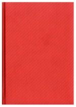 Notes Carbon czerwony